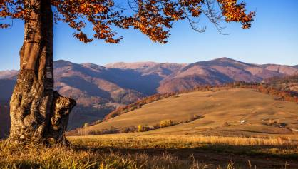 Jesenné momenty s 25% zľavou