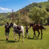 Jazdenie na poníkoch