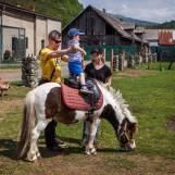Janzdenie na poníkoch Ajax farma