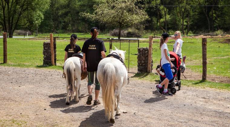 Jazdenie na koňoch Ajax farma